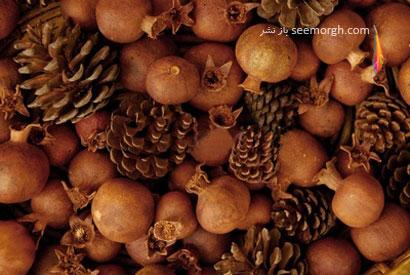 تزیین انار شب یلدا با میوه درخت کاج